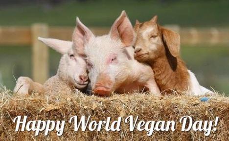 vegan-day-2