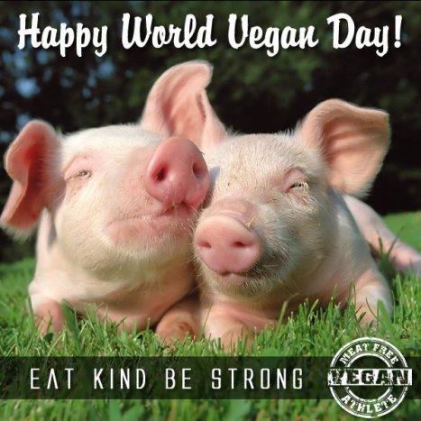 vegan-day-3