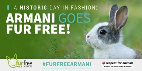armani-fur-free