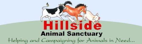 hillside-logo