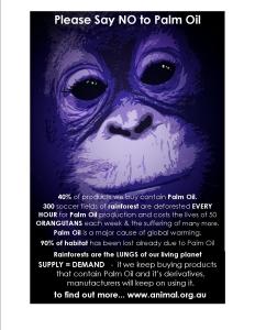 palm-oil-3