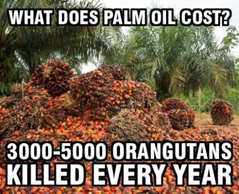 palm-oil-cost