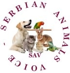 sav-logo-red-by-paola