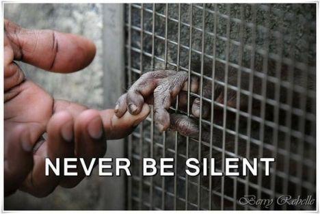 never-be-silent