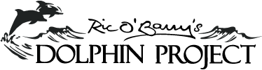 dolphin-project-logo