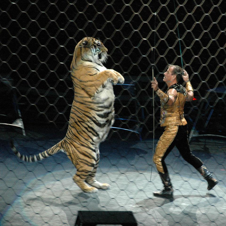 Circus Serbian Animals Voice Sav Page 2