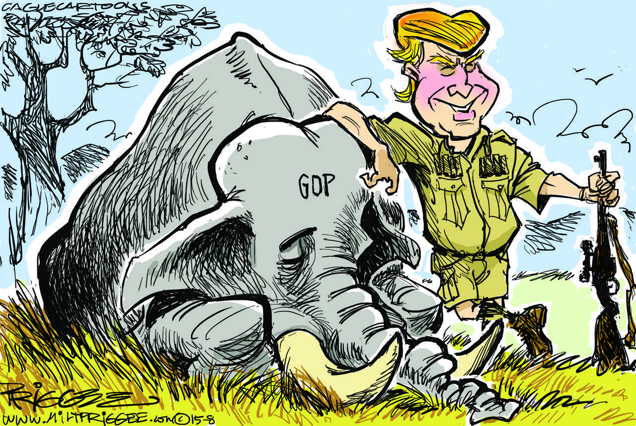 Image result for picture of a hunted republican elephant