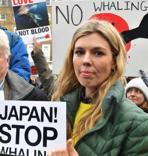 carrie symonds dolphin hunt protest.jpg