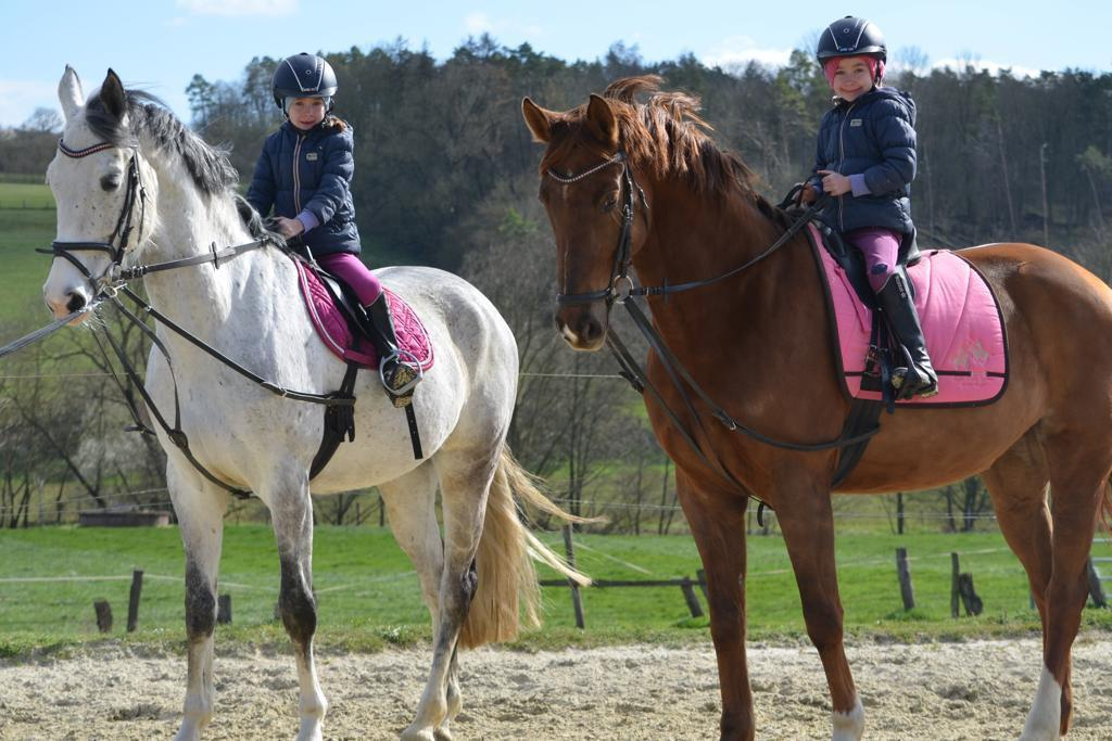 Horse Riding Don T Use Your Friends Serbian Animals Voice Sav