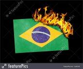 Brazil burning